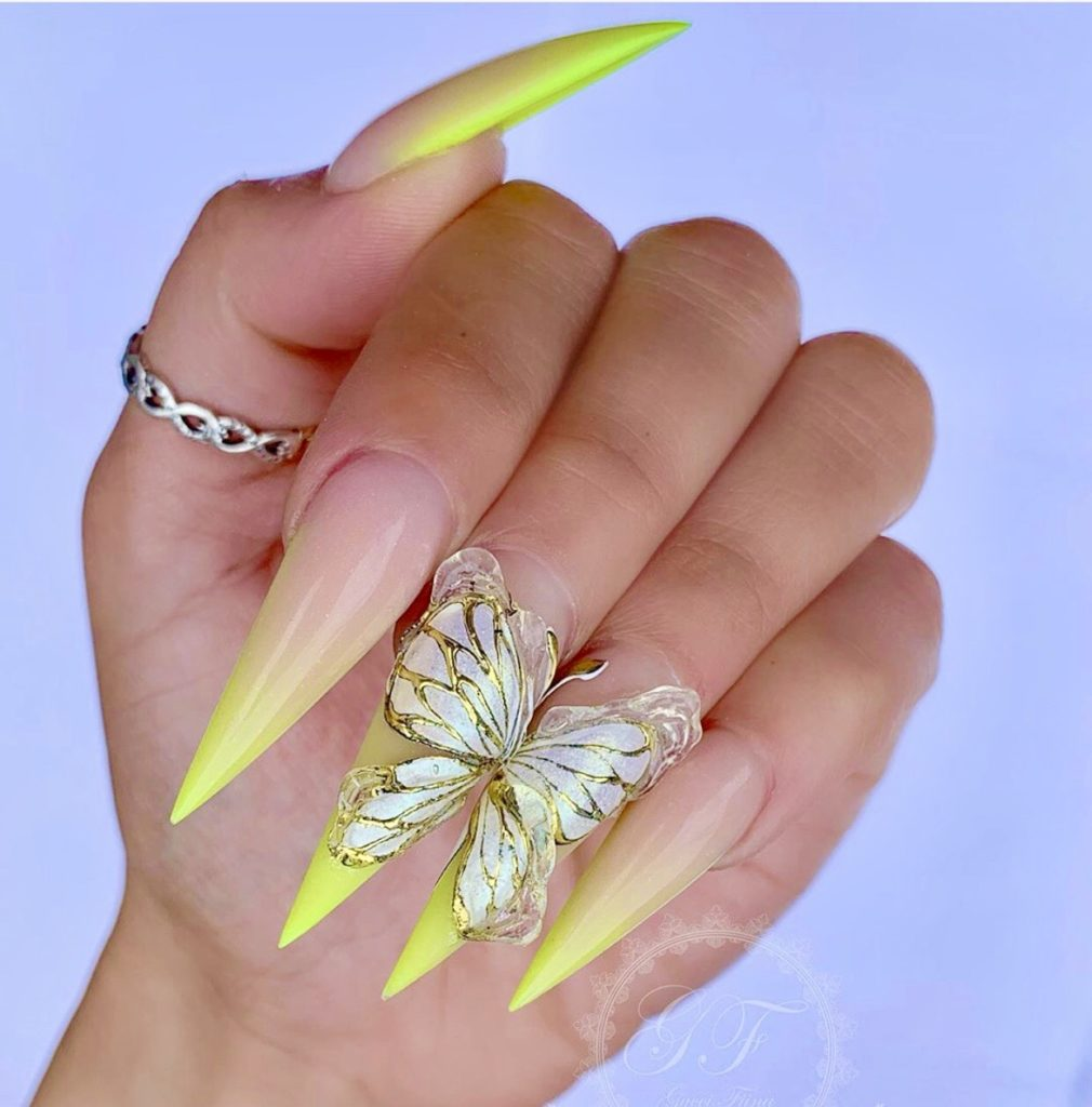 Butterfly Ombre Nail Designs